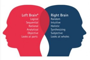 Picture of two brains