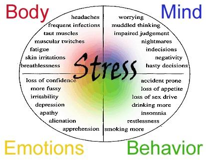 Stress Surprises