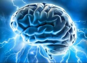 Secrets Of Brain Health