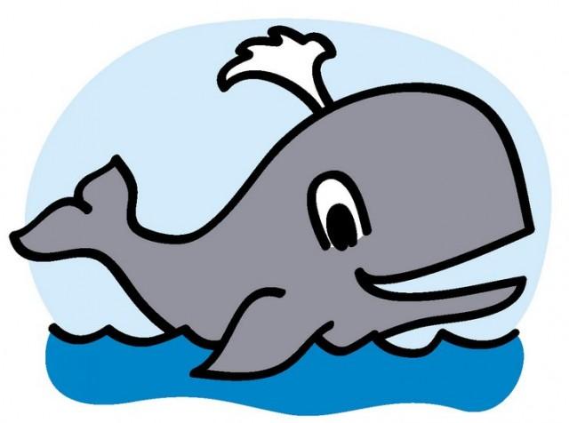 Wondrous Whale